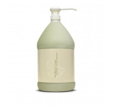 Shower Gel Gallon | Verde Collection | Gilchrist & Soames
