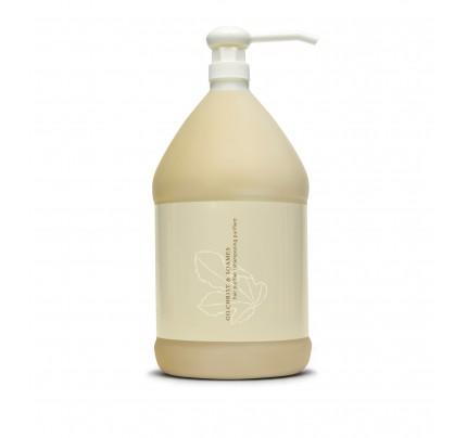 Shampoo Gallon | Verde Collection | Gilchrist & Soames