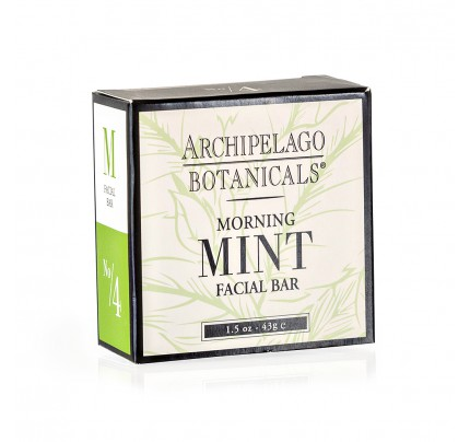 1.5oz Aloe Soap | Archipelago Botanicals | Simply Supplies
